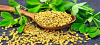 Традиционната китайска медицина и лечебните горчиви семена