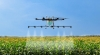 Сателити, дронове и камери в китайското земеделие